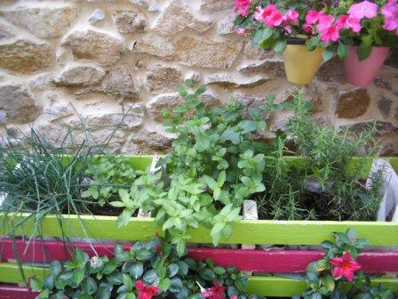 Herb trough